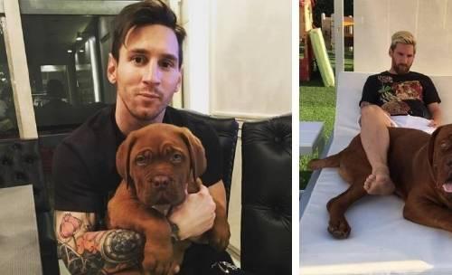 """El """"pequeño cachorrito"""" de Messi creció y todo el mundo está sorprendido co.."""