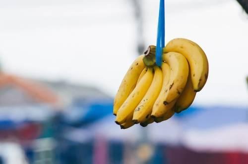 Las bananas son deliciosas pero podrían extinguirse pronto