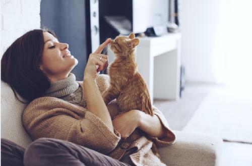5 gestos con los que tu gato te dice que te quiere