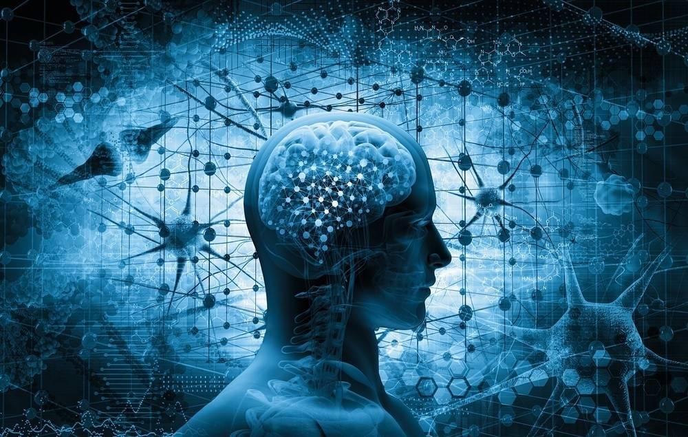 9 formas de llenar tu cerebro de células nuevas