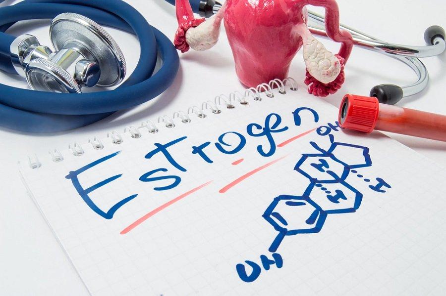 estrógeno hormonas