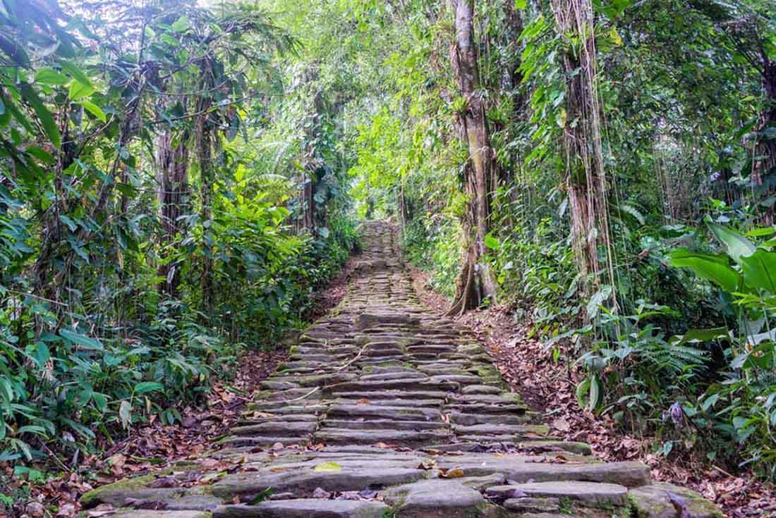 El misterio de la Ciudad Perdida del Dios Mono y las especies extintas que reaparecen allí