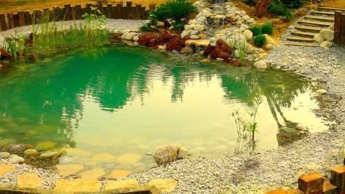 Piscinas ecológicas para preservar el medio ambiente