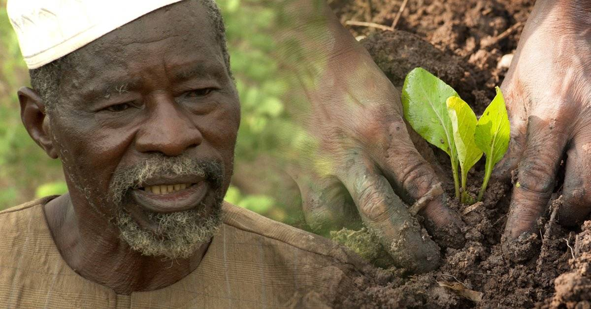 "Premiaron con un ""Nobel alternativo"" a Yacouba Sawadogo, el ""hombre que detuvo e"