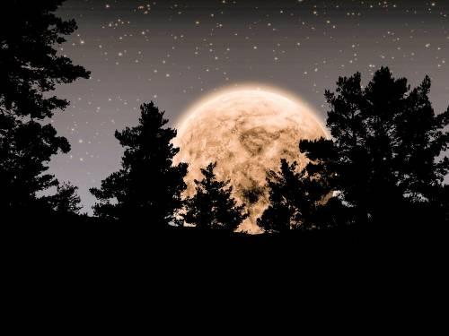 ¿Por qué esta luna llena se llama Luna de Fresa?