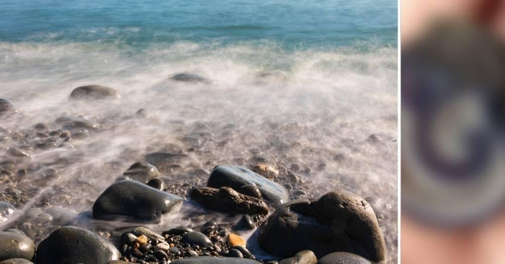 """Alguien encontró una \""""piedra\"""" en el mar. Años después supo lo que era"""