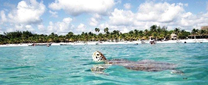 playas de México akumal