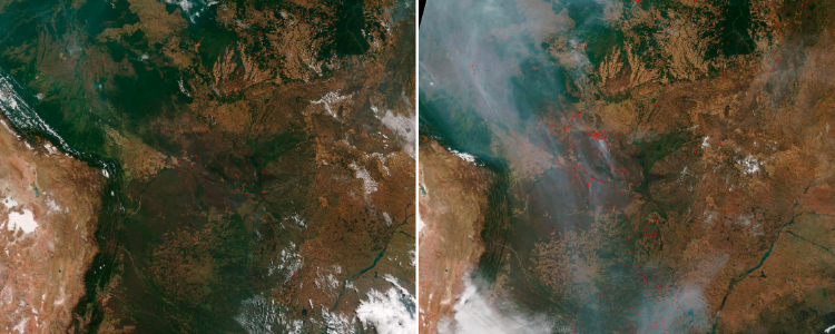 Imágenes satelitales del Amazonas