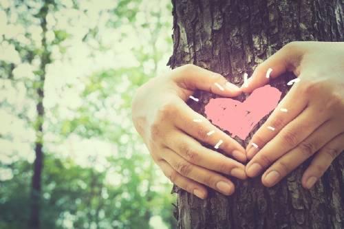 3 beneficios que puede traerte a tu vida abrazar a un árbol