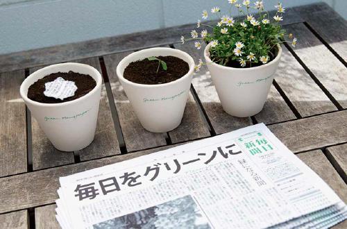 Japón: Crean un periódico que, luego de leerlo, se convierte en flores para abej