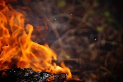 2017 se convierte en el tercer peor año en incendios forestales del decenio