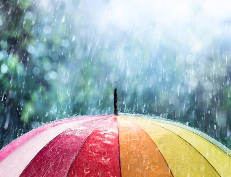 lluvia sombrilla