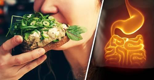 3 métodos para volverte vegetariano rápidamente