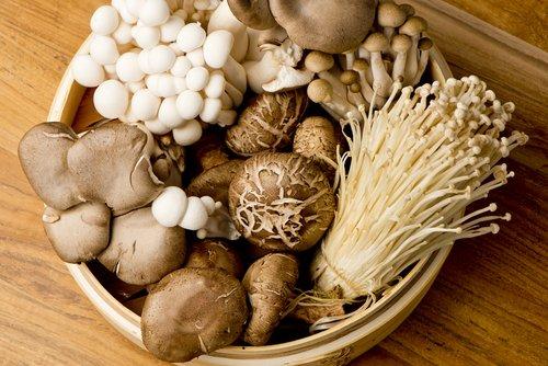 Comer hongos es bueno para el cerebro