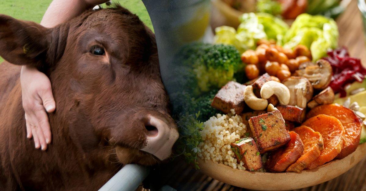 5 libros sobre veganismo que te ayudarán a comenzar una