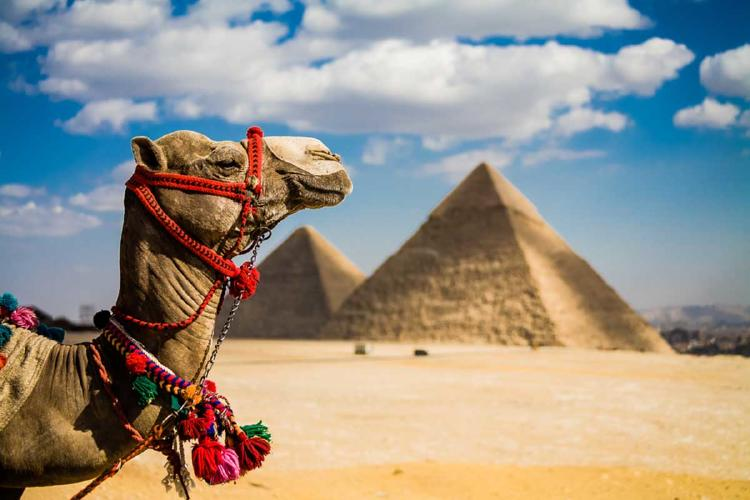 007 camello piramide
